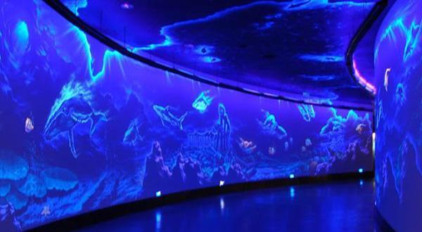 北京海洋馆,位于北京动物园内,总建筑面积4.2万平方米,绿化面积达8万多平方米。海洋馆南倚长河、毗邻北京展览馆、天文馆和首都体育馆,交通便利。作为世界最大、设施最先进的内陆海洋馆,外形采用了别具一格的海螺形状,色彩艳丽,将一个蔚蓝色的世界呈现在人们面前。北京海洋馆建筑造型独特、恢弘壮观,犹如一只蓝色的大海螺,躺在绿树环抱、花团簇拥的沙滩上。北京海洋馆拥有世界先进的维生系统,使用人工海水,总水量达18000吨。馆内以陶怡大众,教益学生,维系生态为宗旨,为游客巧妙安排了雨林奇观、触摸池、海底环