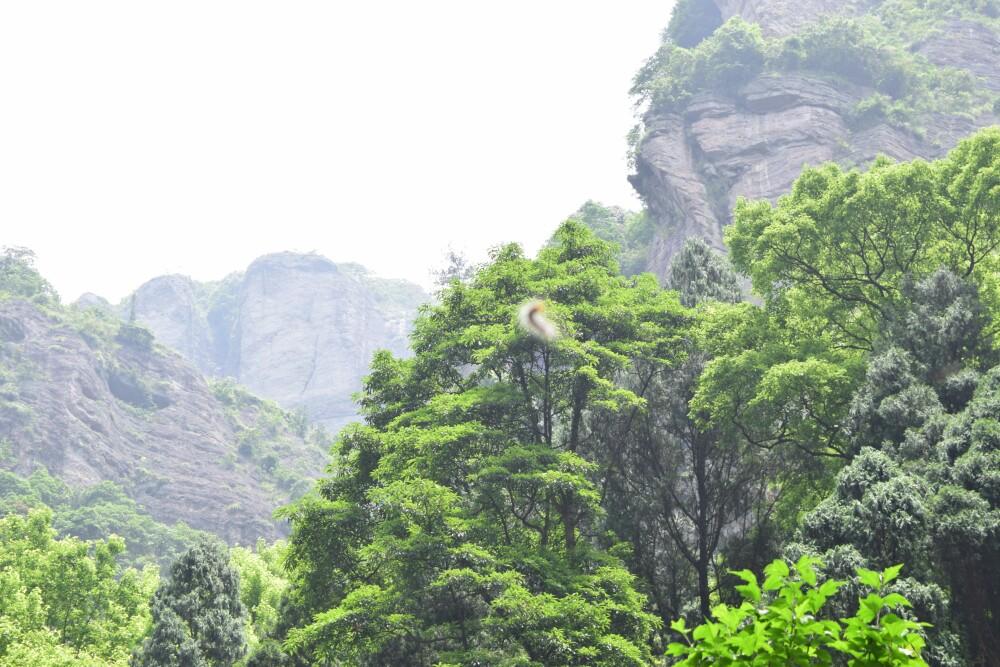 灵岩景区图片