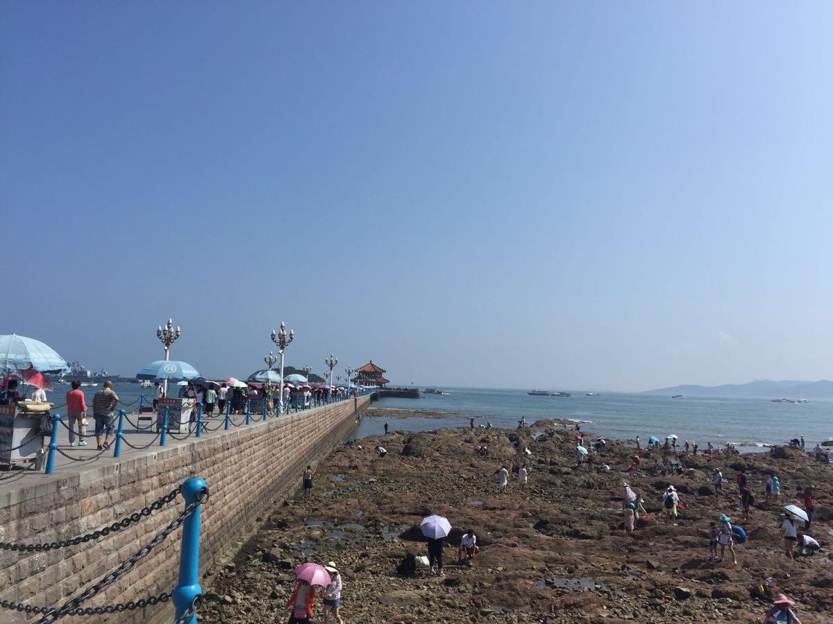 青岛最早的军事专用人工码头建筑,现在是青岛的重要标志性建筑物和著名风景游览点。栈桥全长440米,宽8米,钢混结构。栈桥就在青岛火车站附近,出站了往刮海风的方向走,就能到哈~!楼上的驴友也说了路线。海边有很多喂海鸥的人,一般都有人在卖小包装的馒头、油条啦,这是海鸥的最爱,貌似一两块一袋吧,不算多,也可以自己带,这样喂起来尽兴些!当然了,必须得下海滩走走,感受下那里软绵绵的沙滩,细细的海沙,有的足以冒过鞋底哦!岸边都有很多海产工艺品,几十到上百的都有,要学会砍价哦,一般买的多的话,店家都会便宜些。记得我在青岛