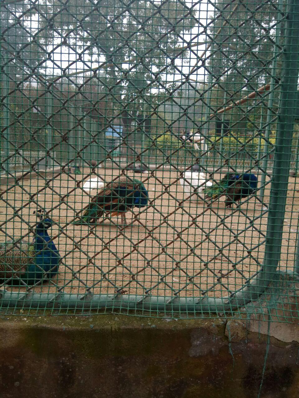 保定市动物园