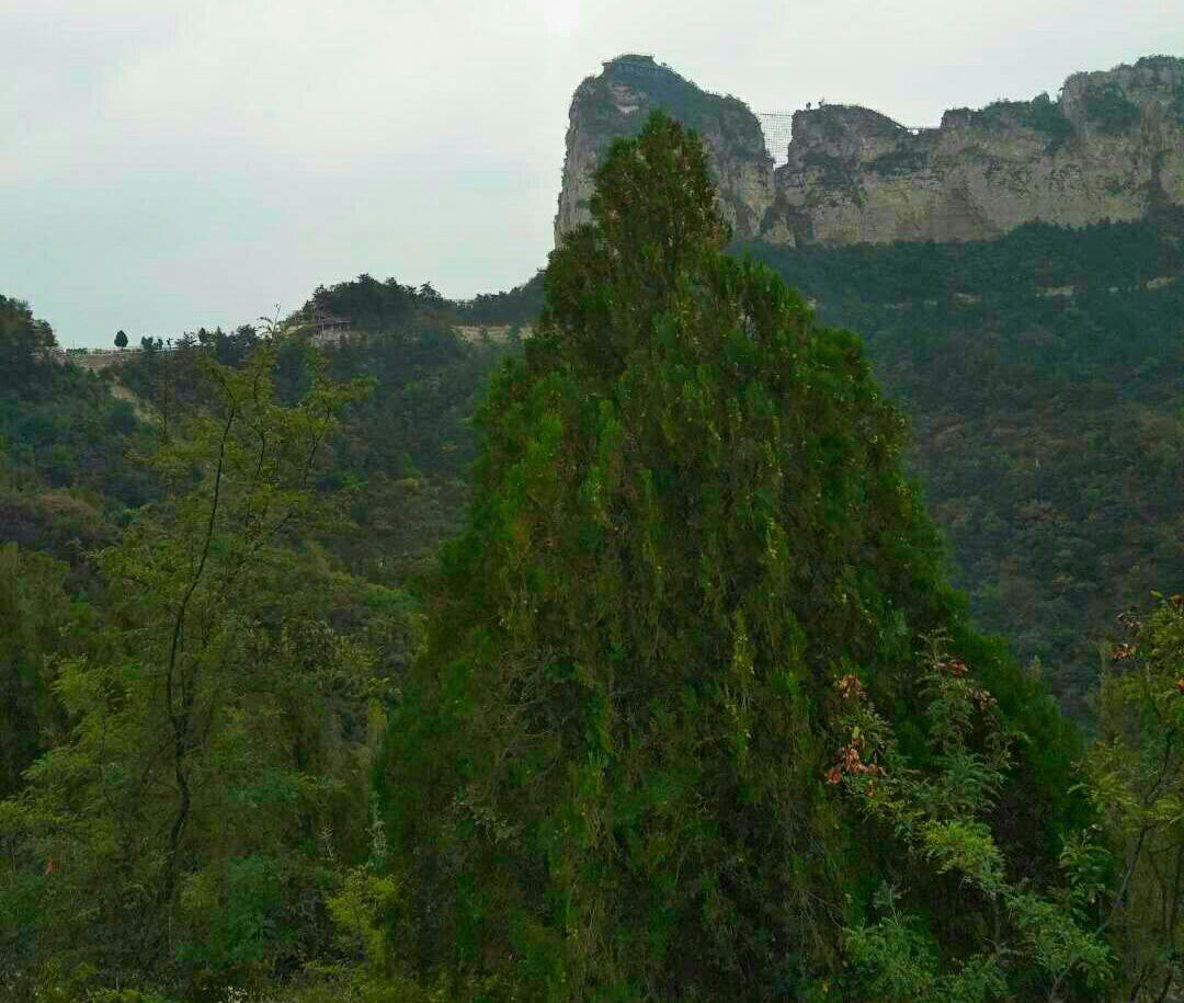 太行五指山景區旅游景點攻略圖