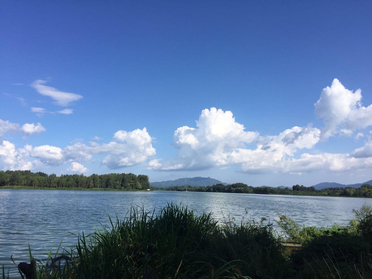 和岳�y`f��,_妫河森林公园免费的,树木郁郁葱葱,河水波光鳞鳞.