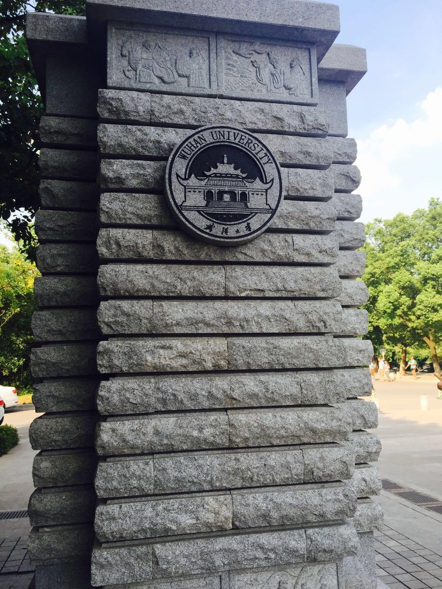 武汉大学王者荣耀排位大全攻略图片