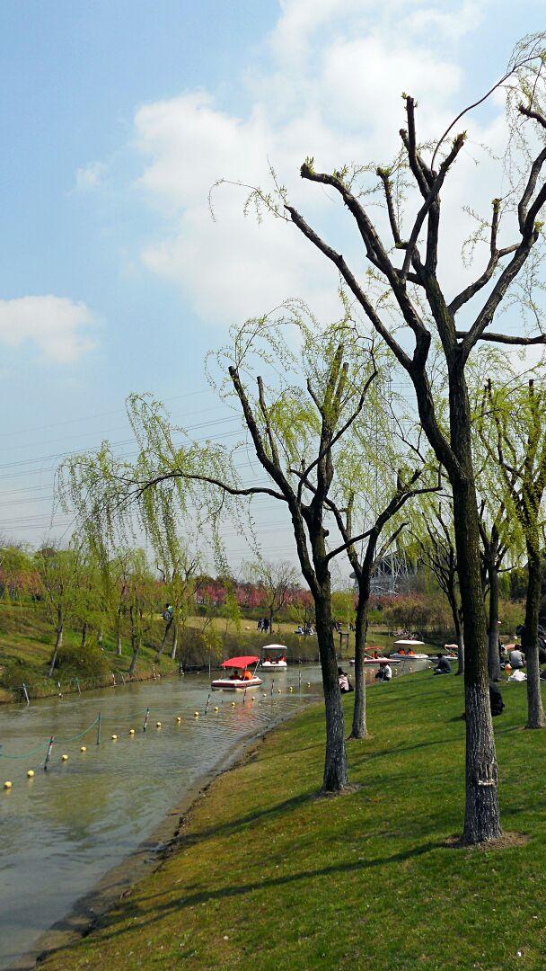 闵行体育公园竹��g._闵行体育公园