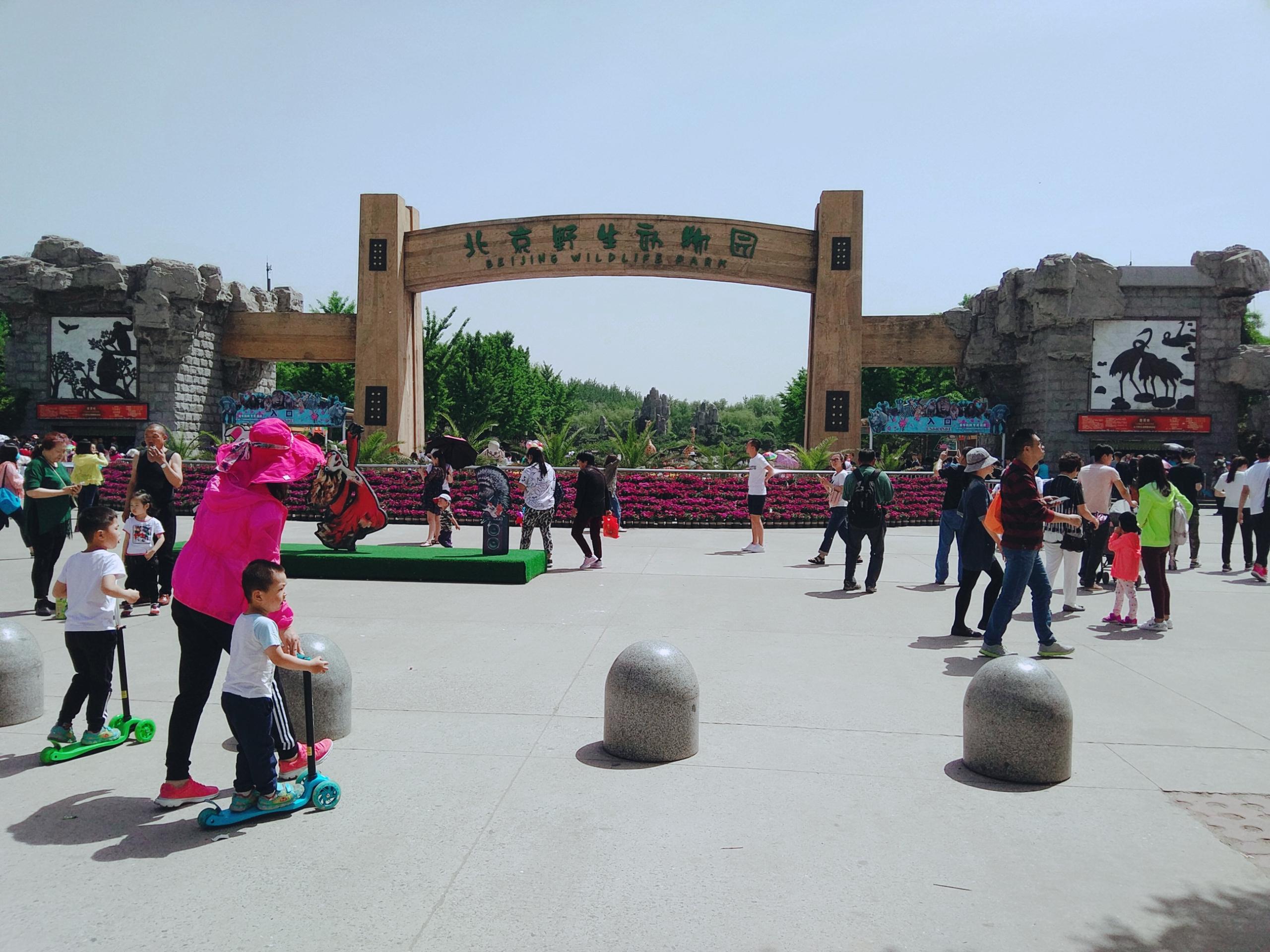 北京野生动物园旅游景点攻略图冰山梁自驾游攻略图片