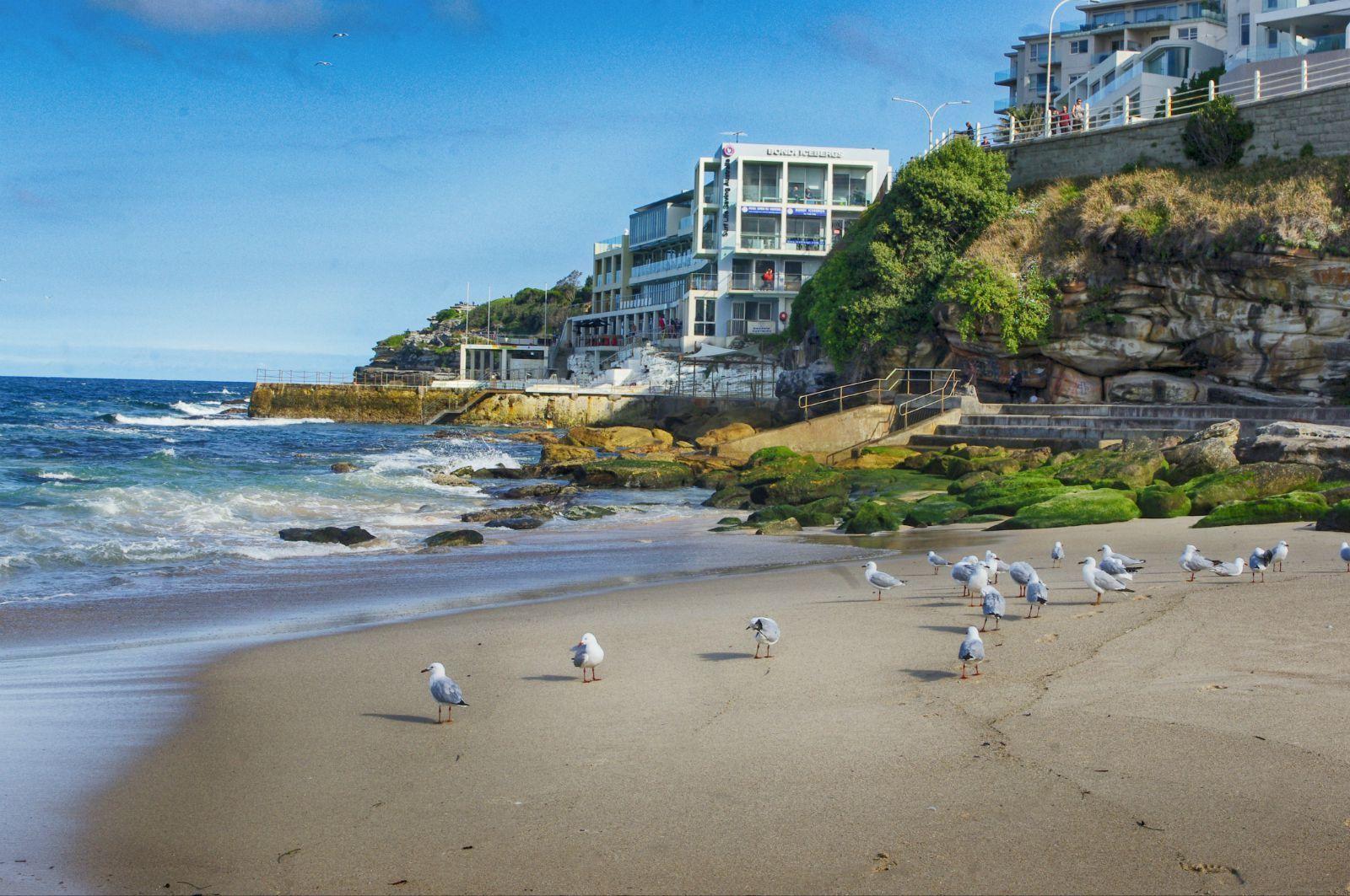 悉尼海滩丹b��(�9��_【携程攻略】悉尼邦迪海滩景点,邦迪海滩是city to 的