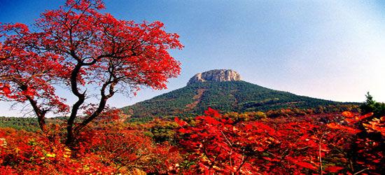 仰天山国家森林公园旅游景点攻略图图片