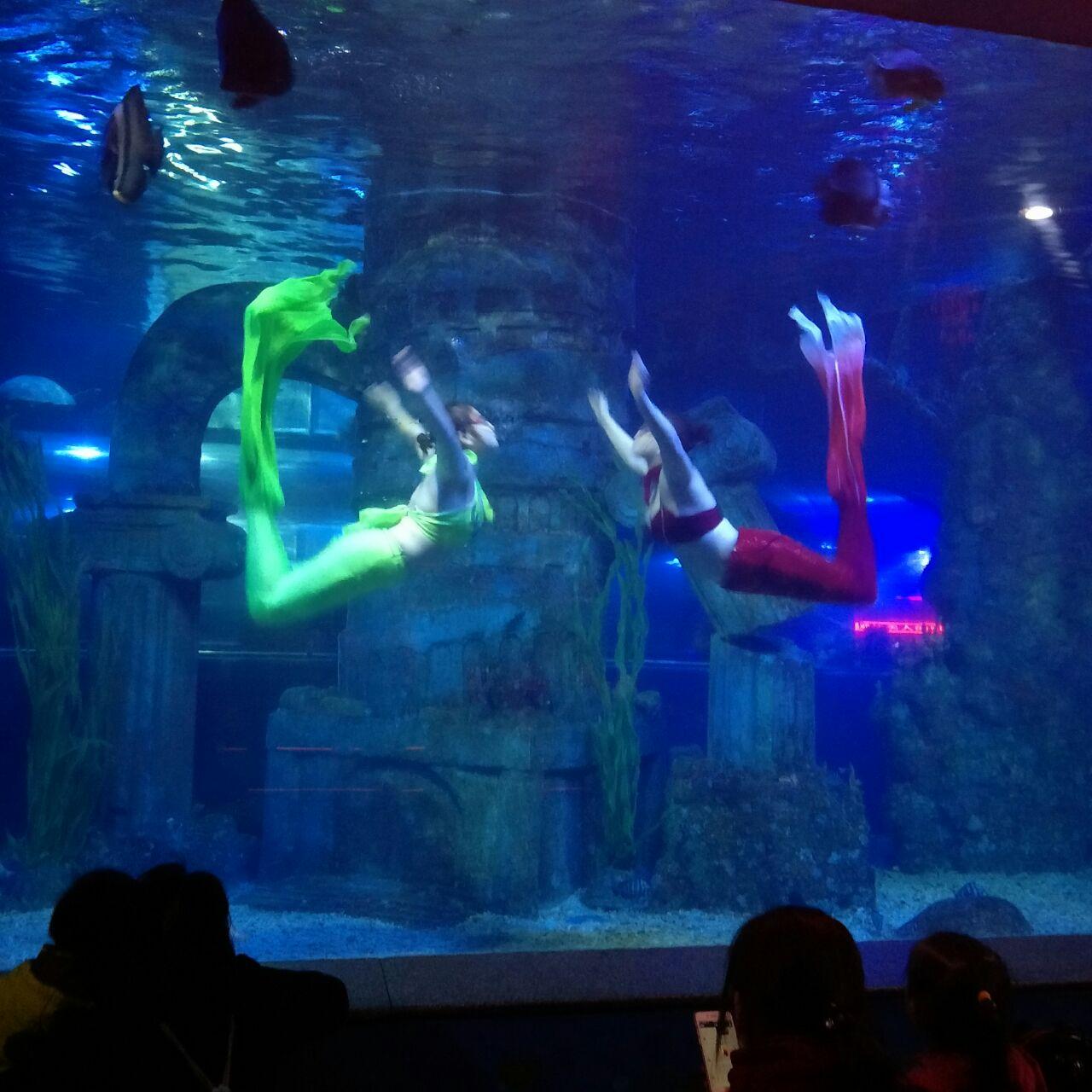 石家庄动物园海洋馆
