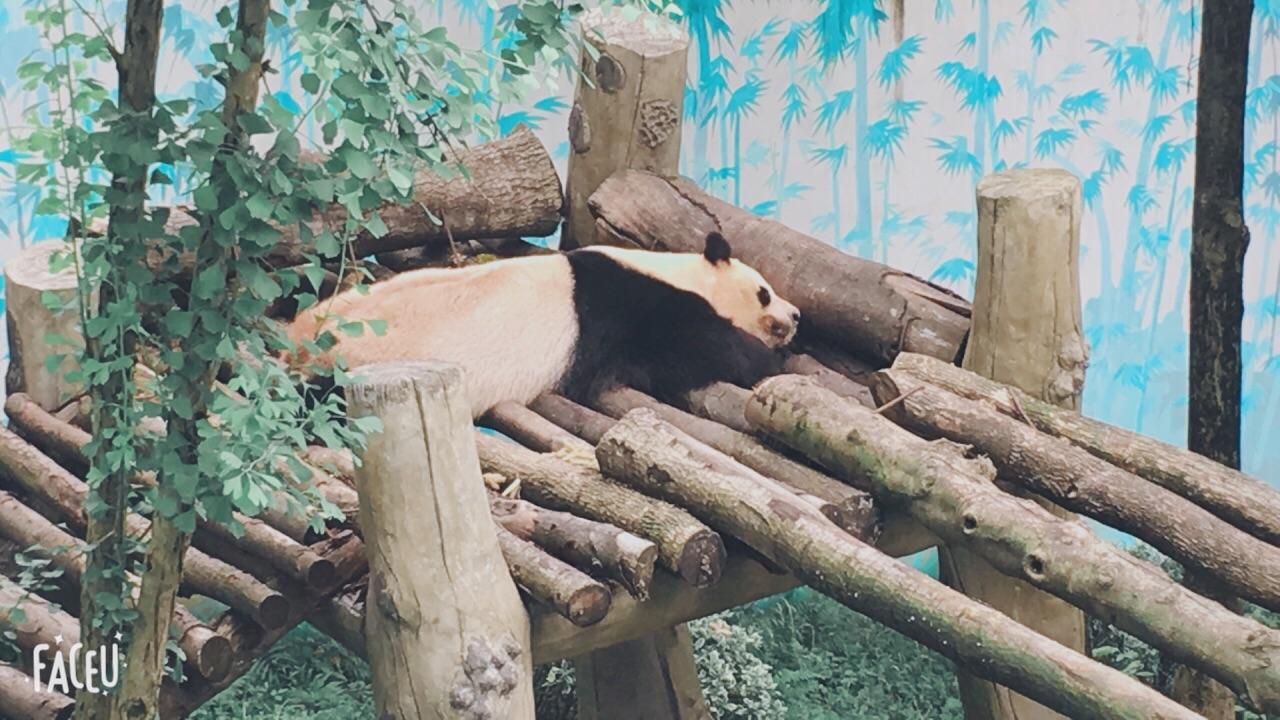 温州动物园
