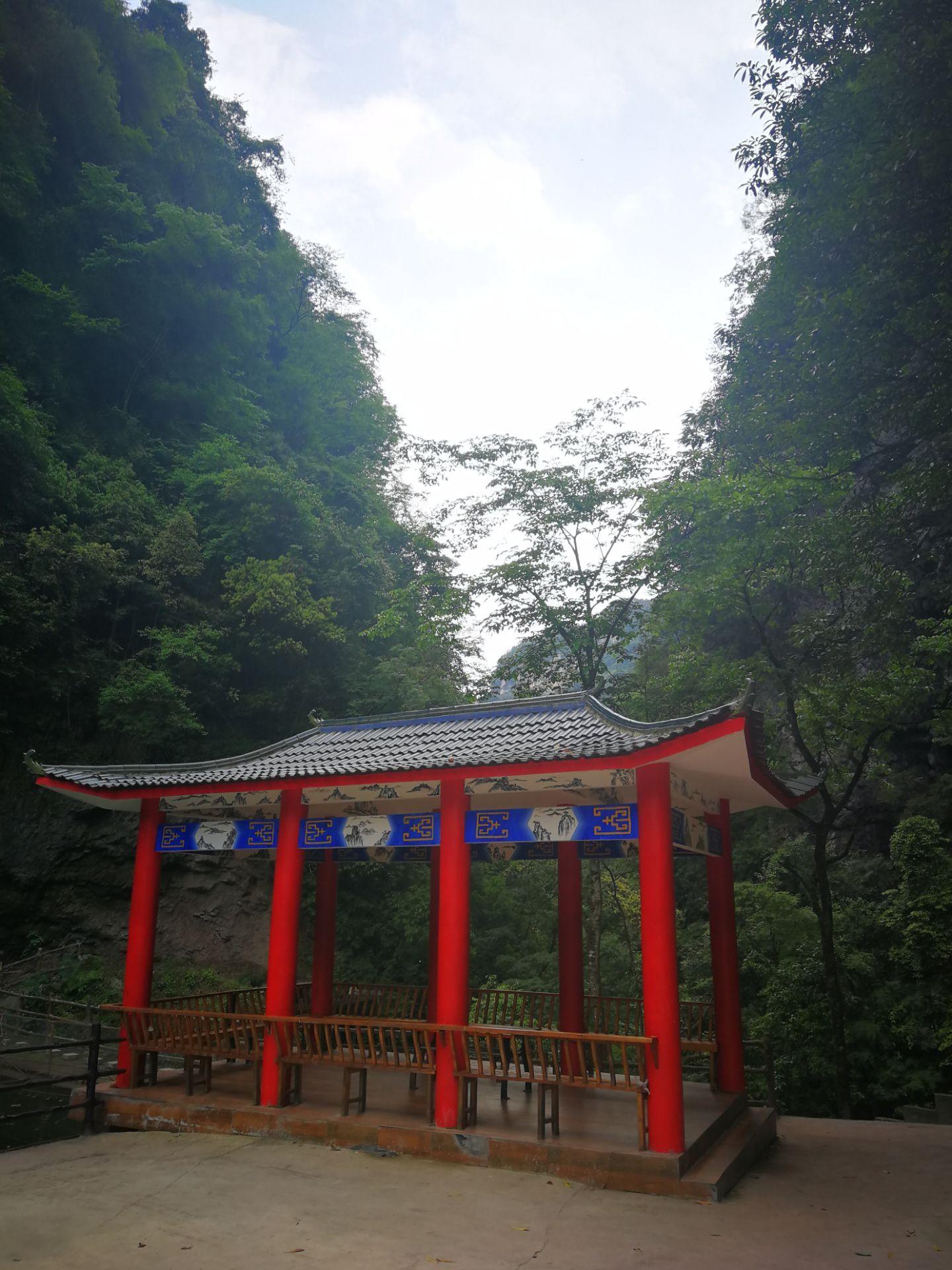 中亚楠木林景区旅游景点攻略图