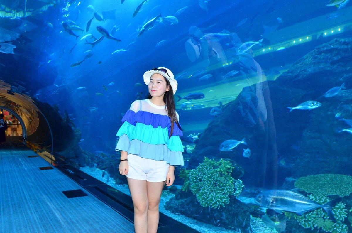 壁纸 海底 海底世界 海洋馆 水族馆 桌面 1200_794