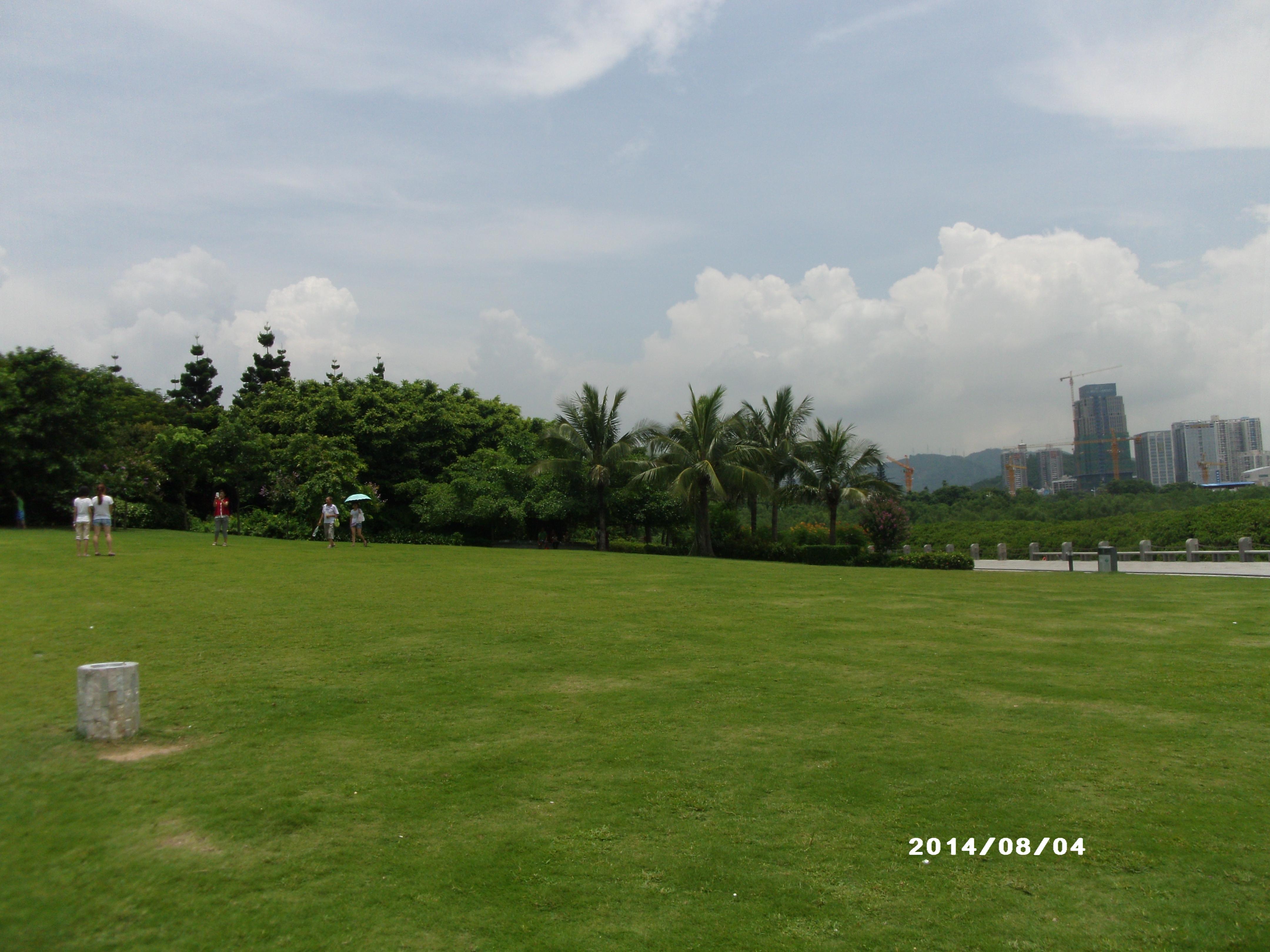 深圳红树林公园门票_建议游览2小时 深圳红树林,几年前去的,不要门票