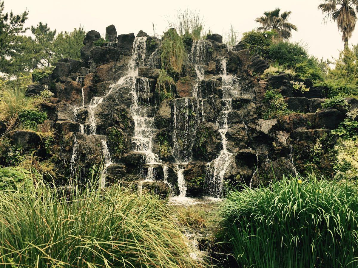 翰林公园,各种亚热带植物和动物