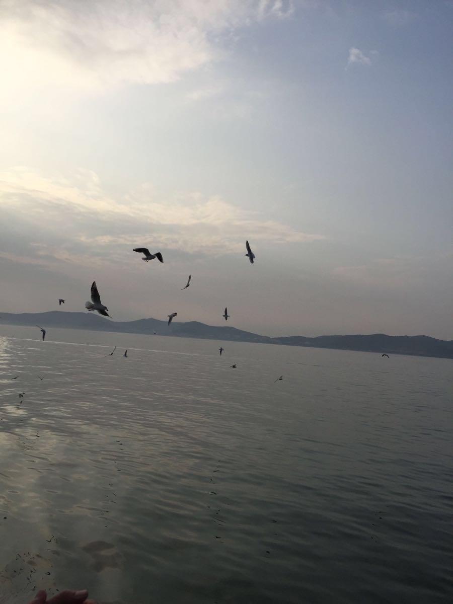 【携程攻略】江苏鼋头渚景点,游太湖坐船看小岛风景哒