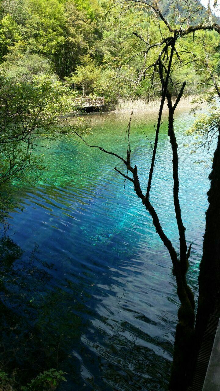風景真的是很美,就像畫里一樣,水很清澈,游人們也都不忍心破壞,五月