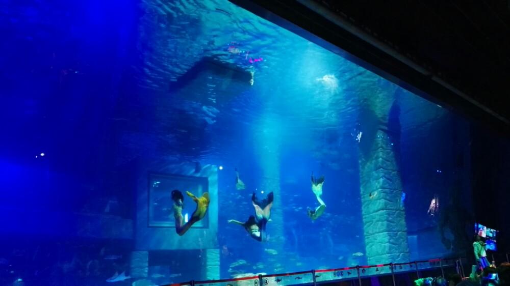 超轻粘土鲨鱼制作步骤