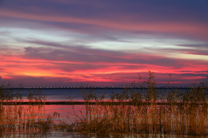 东太湖生态园图片