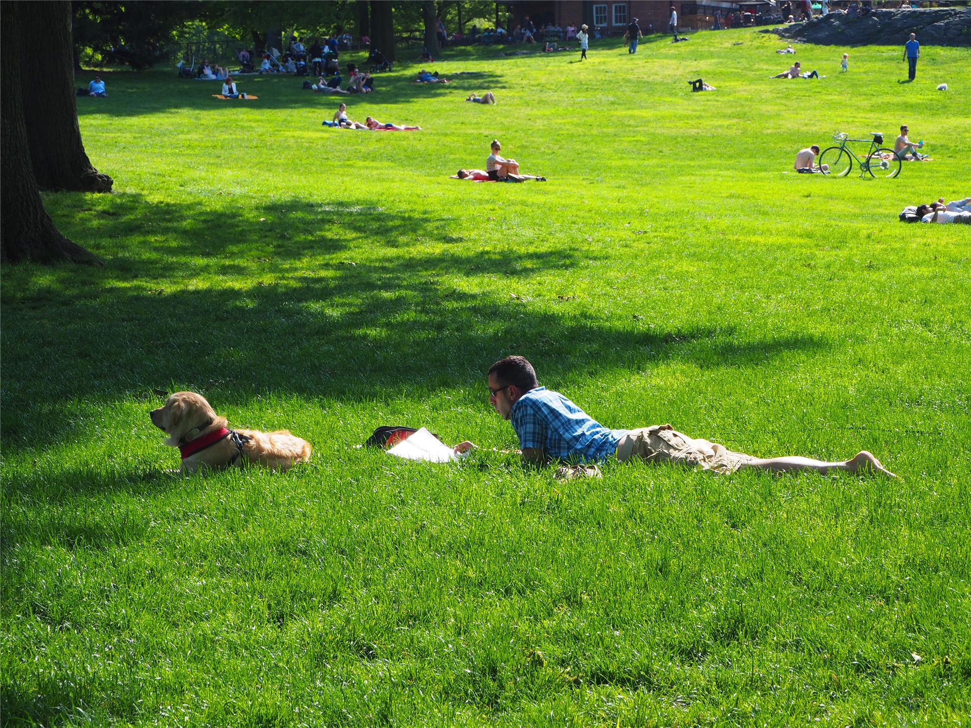 """免费!在这寸土寸金的曼哈顿能保留一个5000多亩的大公园实在难得。多条不同主题的徒步路线让喜欢户外活动的人们慕名而来。当然,骑自行车或者乘坐马车也是游览Central Park的不错选择。城堡附近有个只在夏天为""""莎士比亚公园戏剧节""""开放的Delacorte剧院。"""