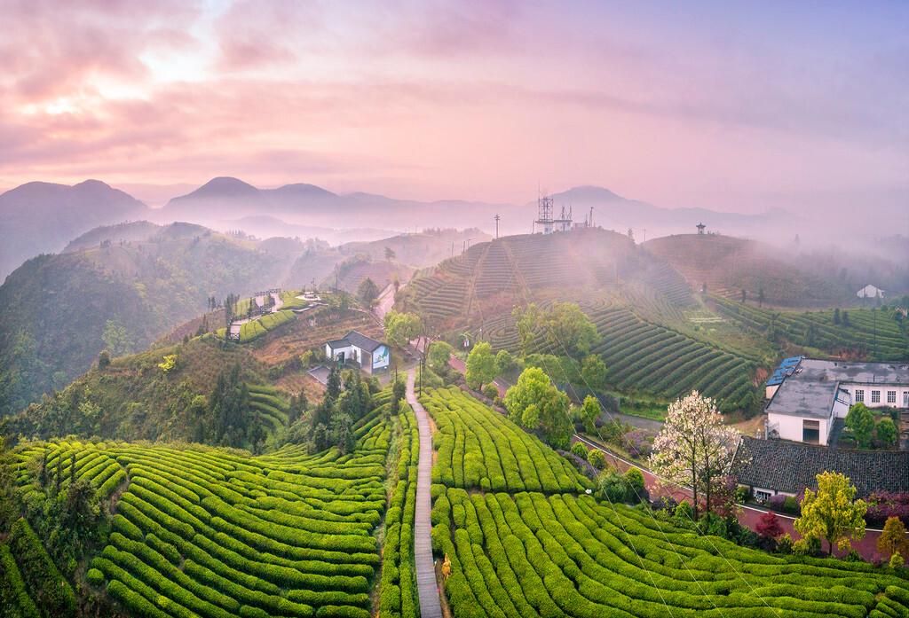 那个不知名的美丽村庄——温州苍南 包邮区周末好去处