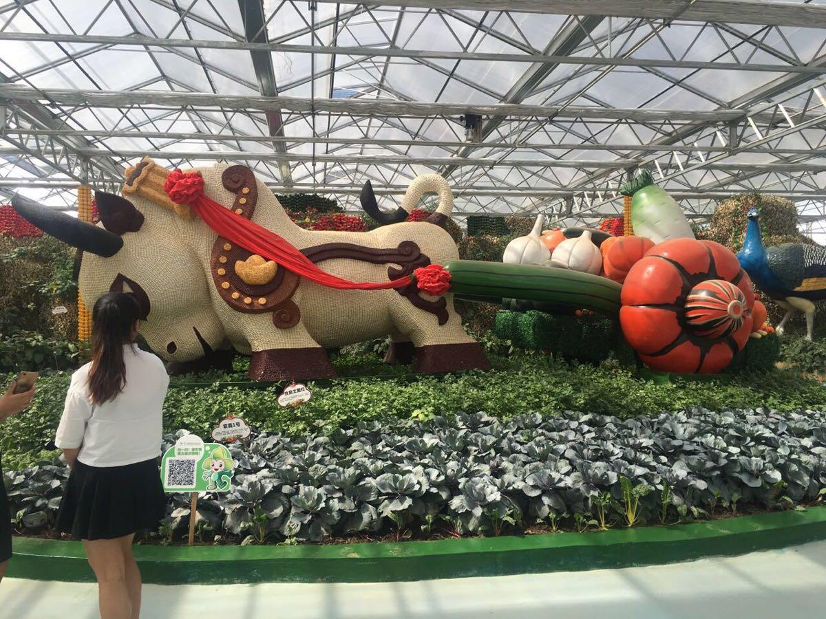 【携程攻略】贵州贵阳农业嘉年华景点