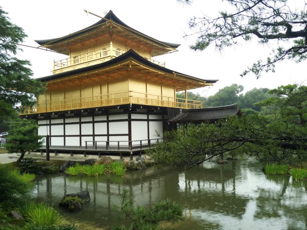 隔着水面给金色的小房子照个相