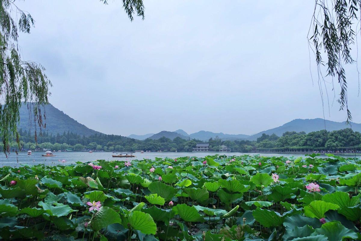 西湖,位于浙江省杭州市西面,是中国大陆首批国家重点风景名胜区和中国十大风景名胜之一。它是中国大陆主要的观赏性淡水湖泊之一,也是现今《世界遗产名录》中少数几个和中国唯一一个湖泊类文化遗产。 西湖三面环山,面积约6.39平方千米,东西宽约2.8千米,南北长约3.2千米,绕湖一周近15千米。湖中被孤山、白堤、苏堤、杨公堤分隔,按面积大小分别为外西湖、西里湖、北里湖、小南湖及岳湖等五片水面,苏堤、白堤越过湖面,小瀛洲、湖心亭、阮公墩三个小岛鼎立于外西湖湖心,夕照山的雷峰塔与宝石山的保俶塔隔湖相映,由此形成了一山、
