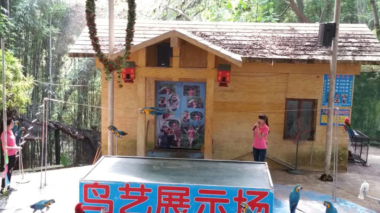 【携程攻略】重庆重庆动物园景点,我是杨家坪的人,我