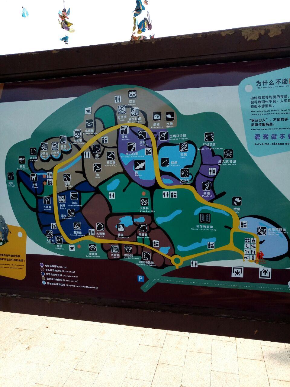 【携程攻略】上海上海动物园景点