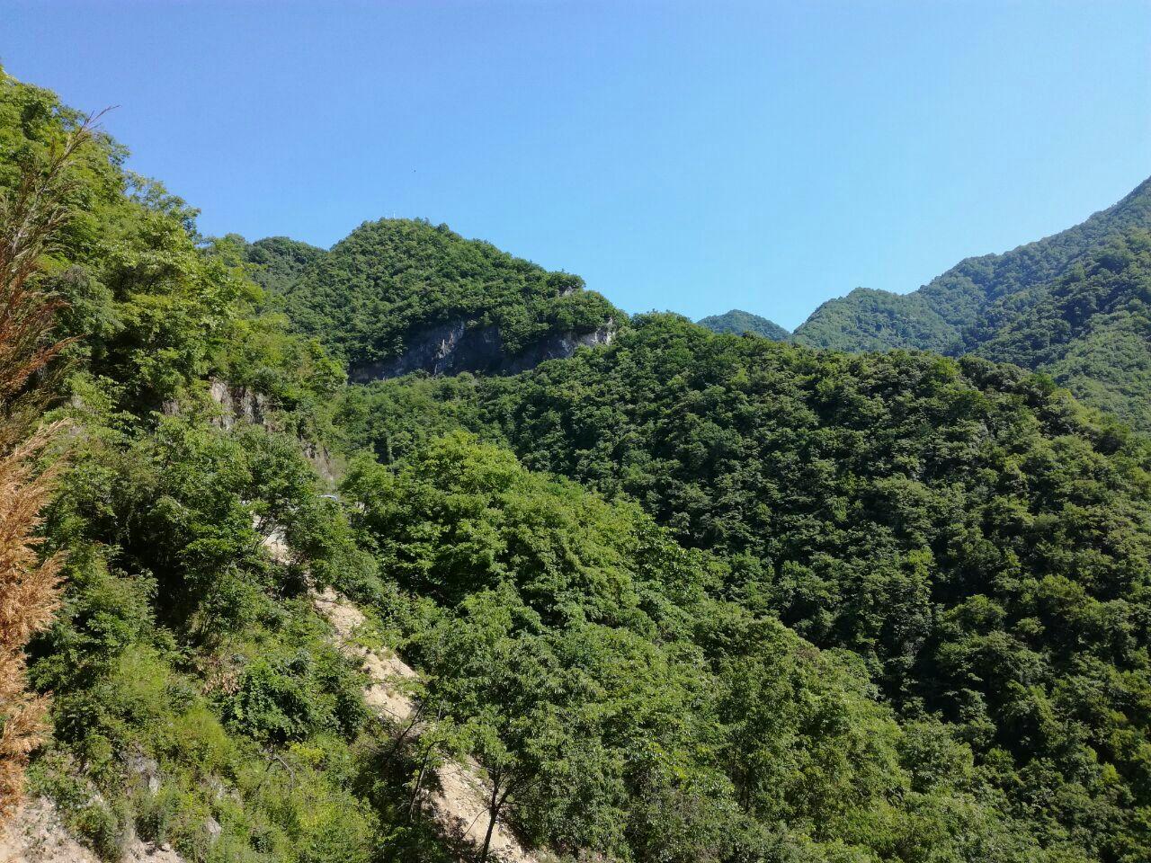佛坪自然保护区旅游景点攻略图南宫安康攻略山岚皋图片