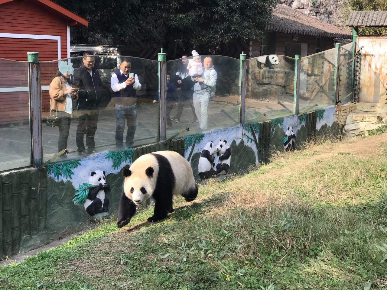 贵州森林野生动物园