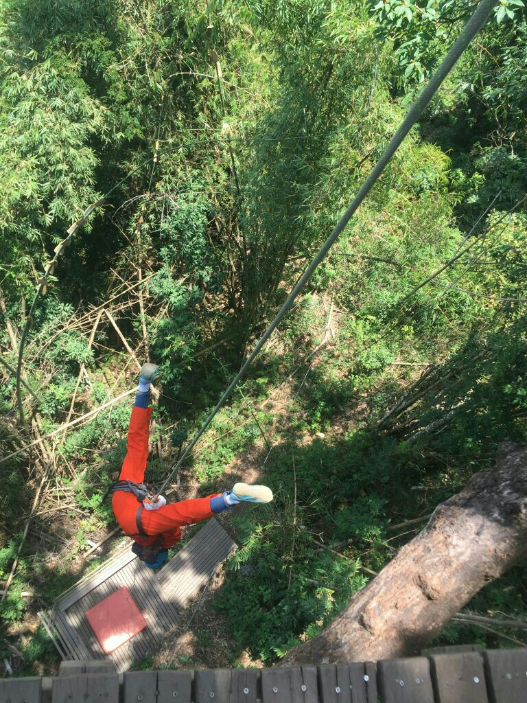 博岩丛林飞跃图片