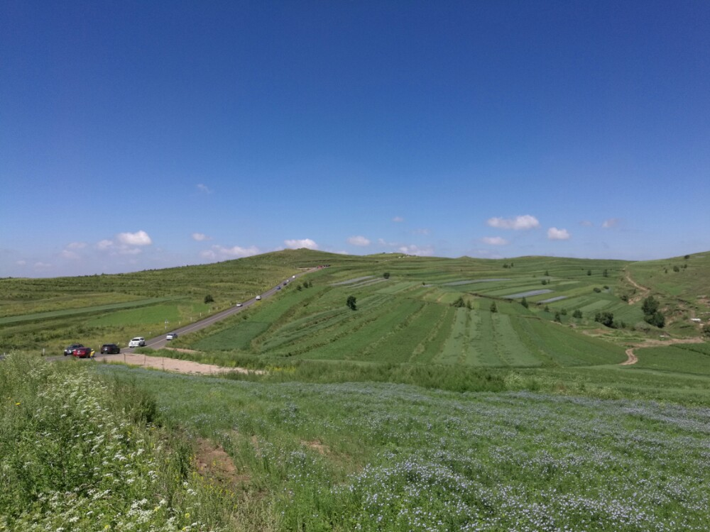 张北坝上草原