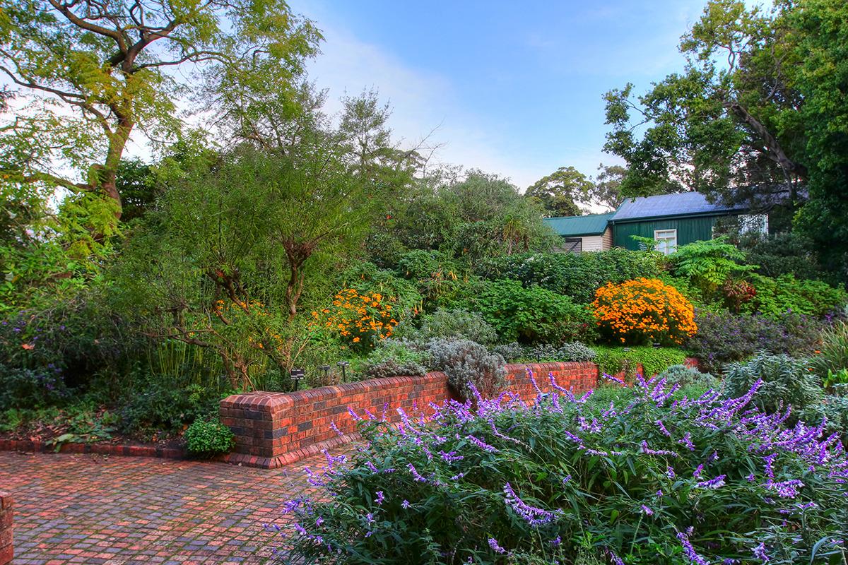 塔形建筑展示澳大利亚热带植物,弧形建筑收集了澳大利亚以外的热带