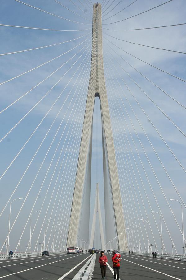 这个所在地区属长江冲积平原的新长江三角洲,是大长江三角洲的近前缘地带。两岸陆域河网密布,地势平坦,高程一般在2~5m(85国家高程系统)之间;局部地段有山丘分布。 苏通大桥拟建区段长江属弯曲与分汊混合型河段。平面形态呈S形弯曲;水面宽窄相间,西段天生港附近宽约6 km,往下展宽,在军山附近宽约10 km,到东方红农场拐角处宽达14 km,再往下突然缩窄,至东段徐六泾附近宽约6 km;江中沙洲发育,槽深滩宽,江心沙洲主要有如皋沙、通州沙和狼山沙、新通海沙、白茆沙等,属心滩地貌;通州沙东水道与新通海沙南水道中