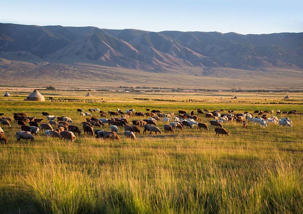 巴里坤草原旅游景点攻略图