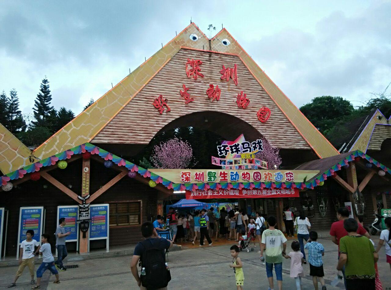 深圳野生动物园夜场——久违啦特价1元门票!