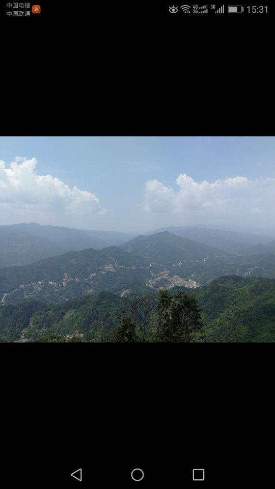 宜昌中亚楠木林景区好玩吗,宜昌中亚楠木林景区景点样