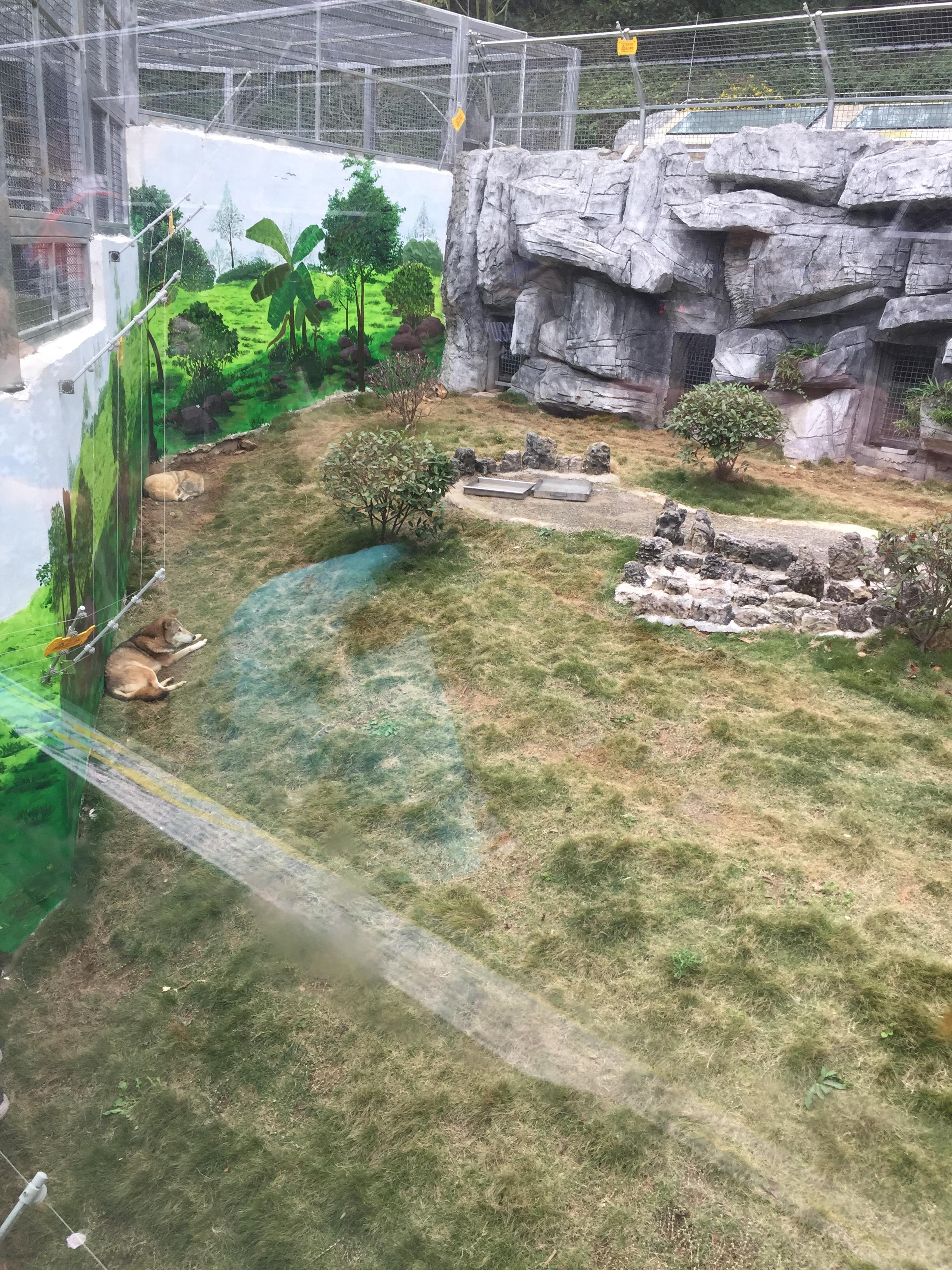 黔灵山公园是一座综合性的游览公园,建于1957年,位于贵阳市西北角,因素有黔南第一山之称的黔灵山而得名。黔灵公园是国家AAAA级旅游区,位于贵阳市中心区西北,是国内为数不多的大型综合性城市公园之一。因为贵阳得天独厚的地理环境,可以在城市的腹地有这么大的一片山,真的是上天给这座城市的馈赠。目前黔灵山公园的门票仅需5元,别以为这里就是普普通通的城市公园,以为花了门票钱是冤枉钱。其实,我刚买票进来也是这么想的,可是等你亲身走进来才发觉真的很值。&#x