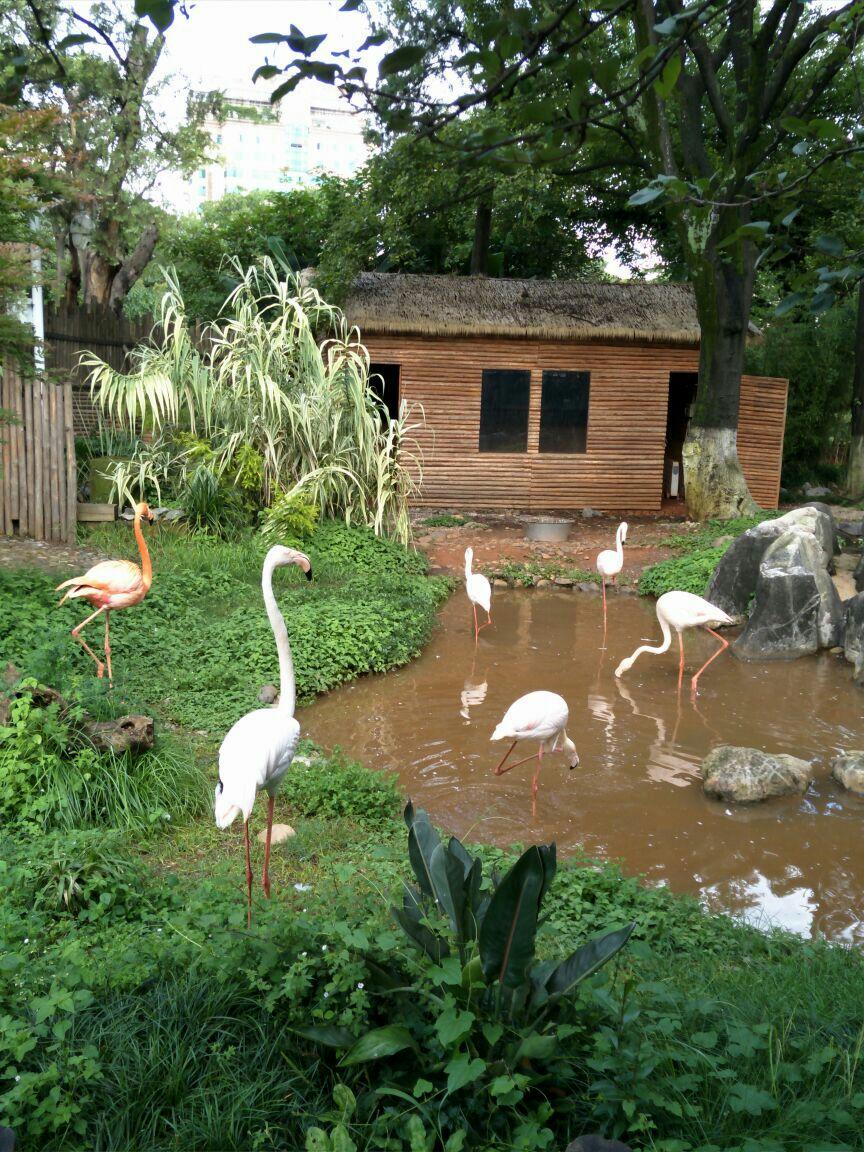 昆明动物园
