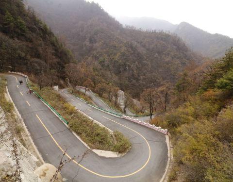 2019红河谷森林公园攻略,眉县红河谷森林公园门最新门票蜀图片