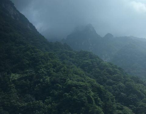 2019红河谷森林公园攻略,眉县红河谷森林公园488关门票图片