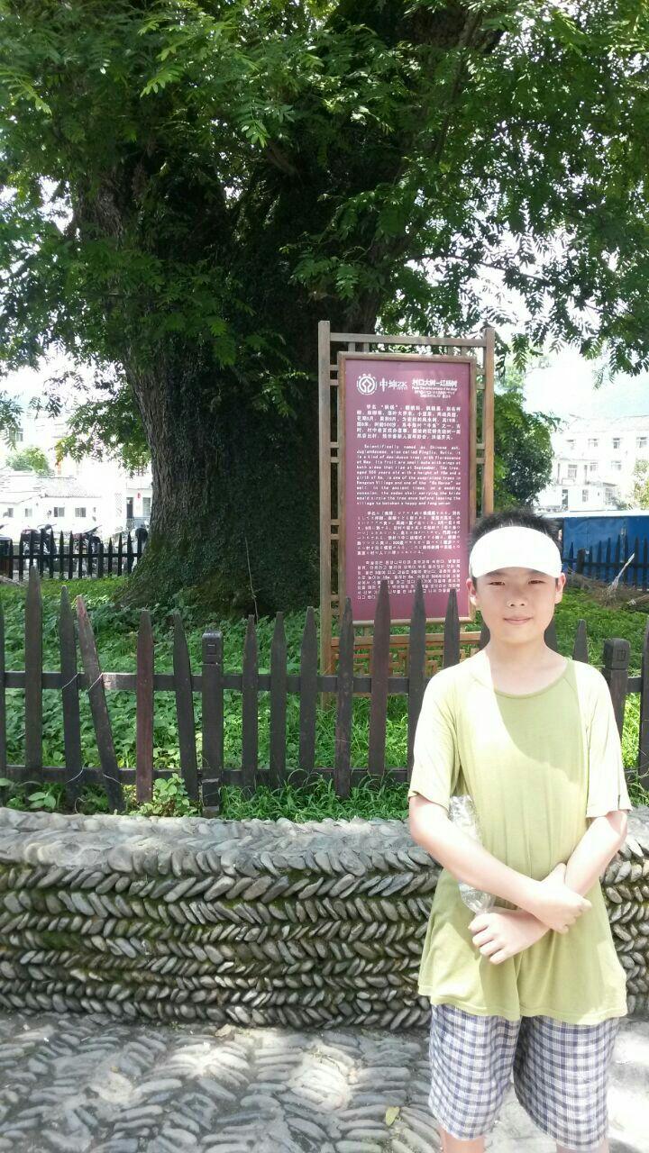 暑假去的宏村,天气炎热,树下乘凉的游客很                    下写生