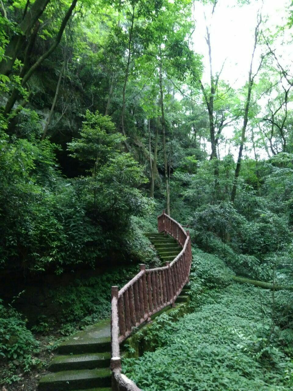 金城山森林公园