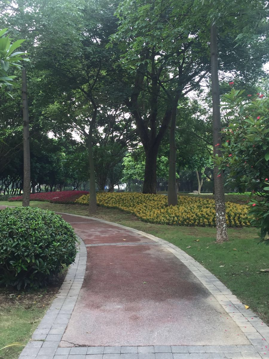 广州发展公园
