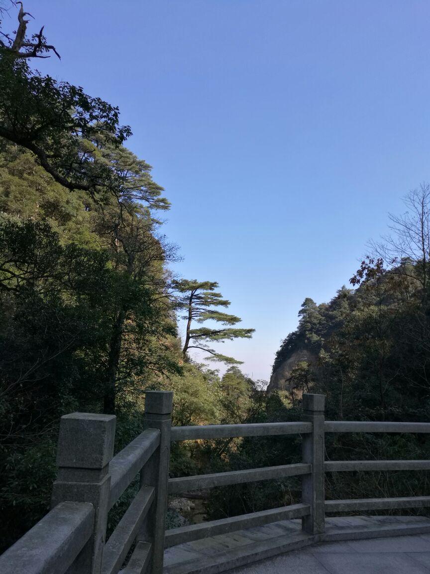 南岭国家森林公园旅游景点攻略图梦幻手游109蜃境攻略图片