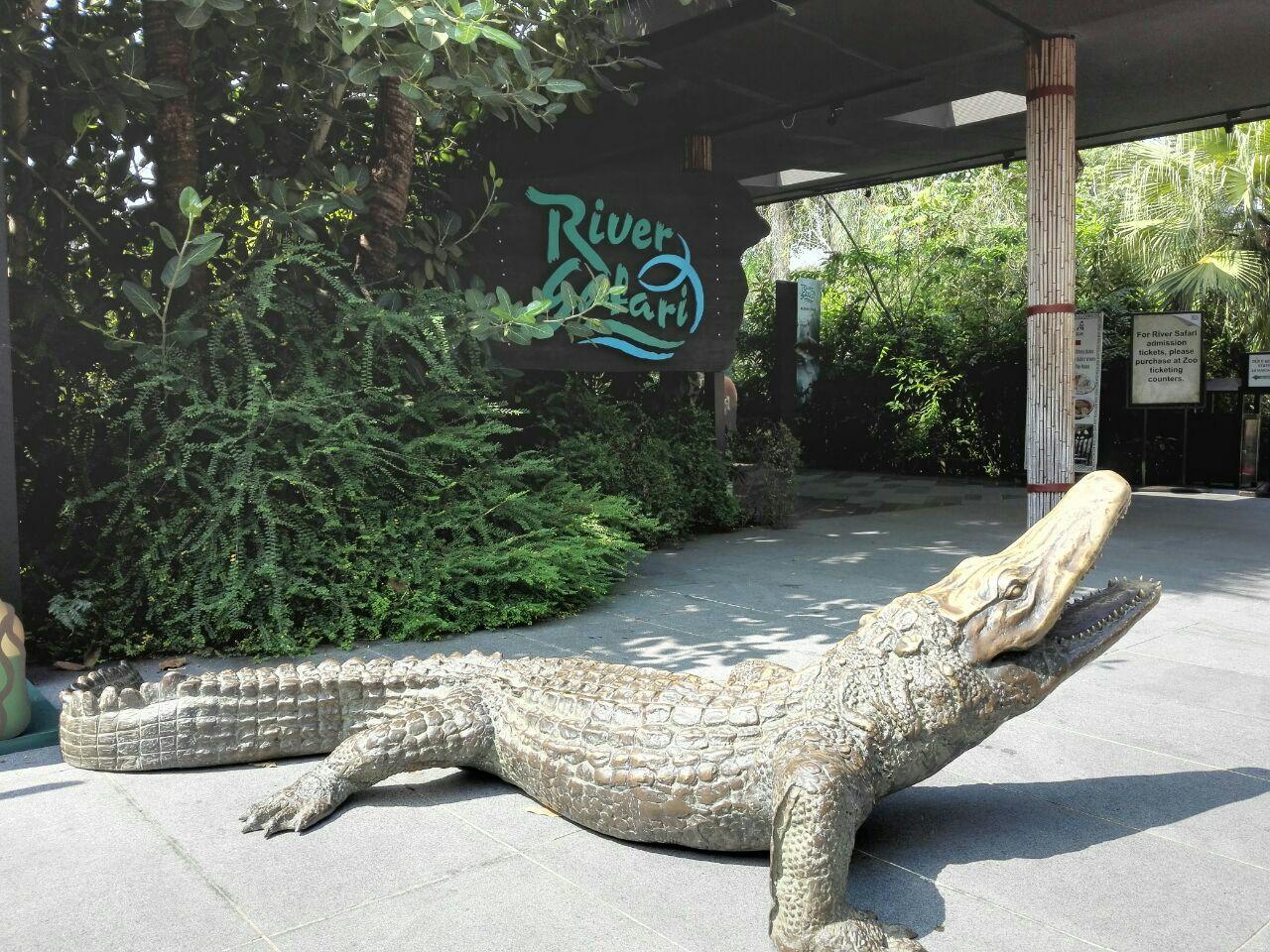 河川生态园是新加坡特有的一个尽可能展示动物在自然界中生活的公园.