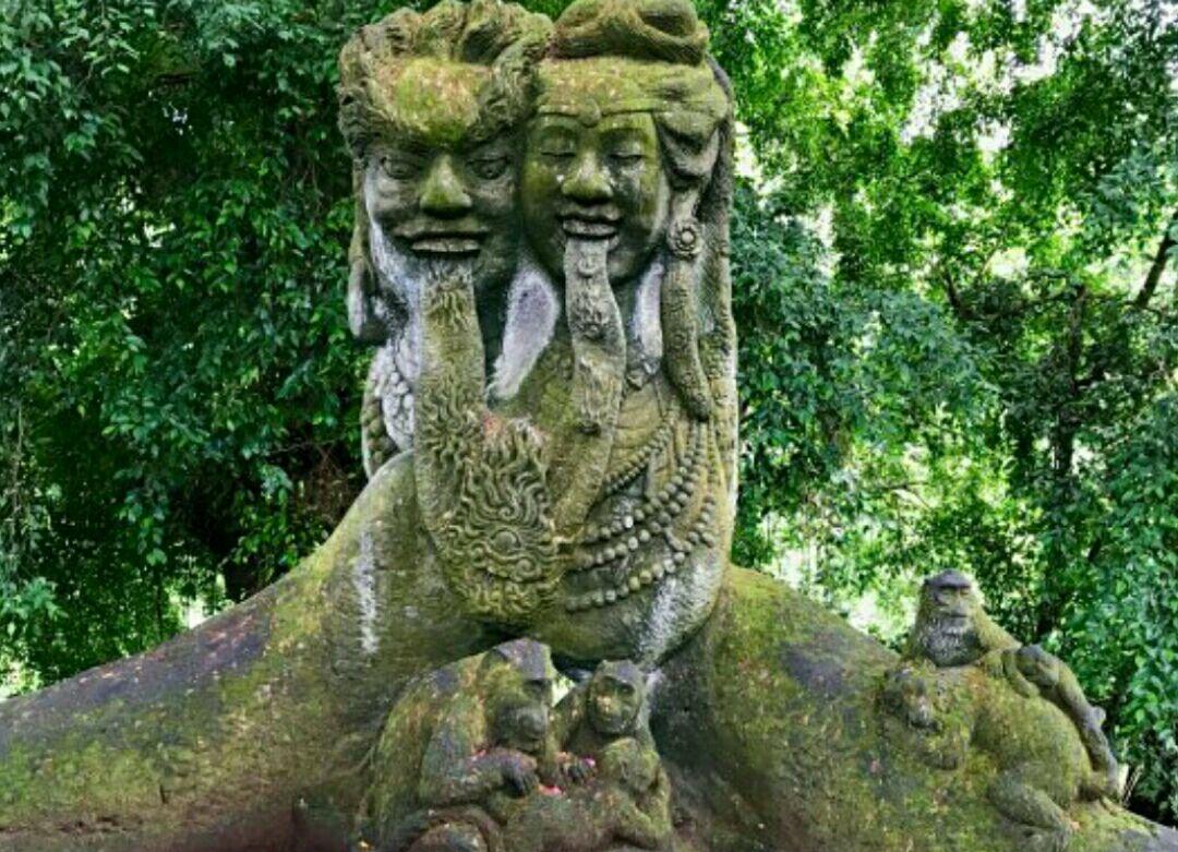 圣猴森林公园图片