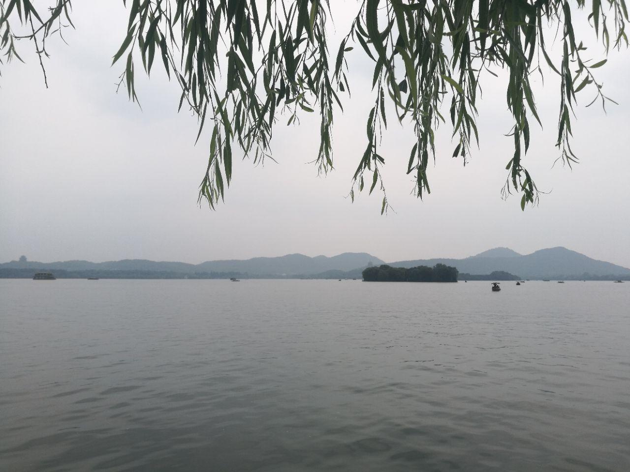 西湖手划船手绘