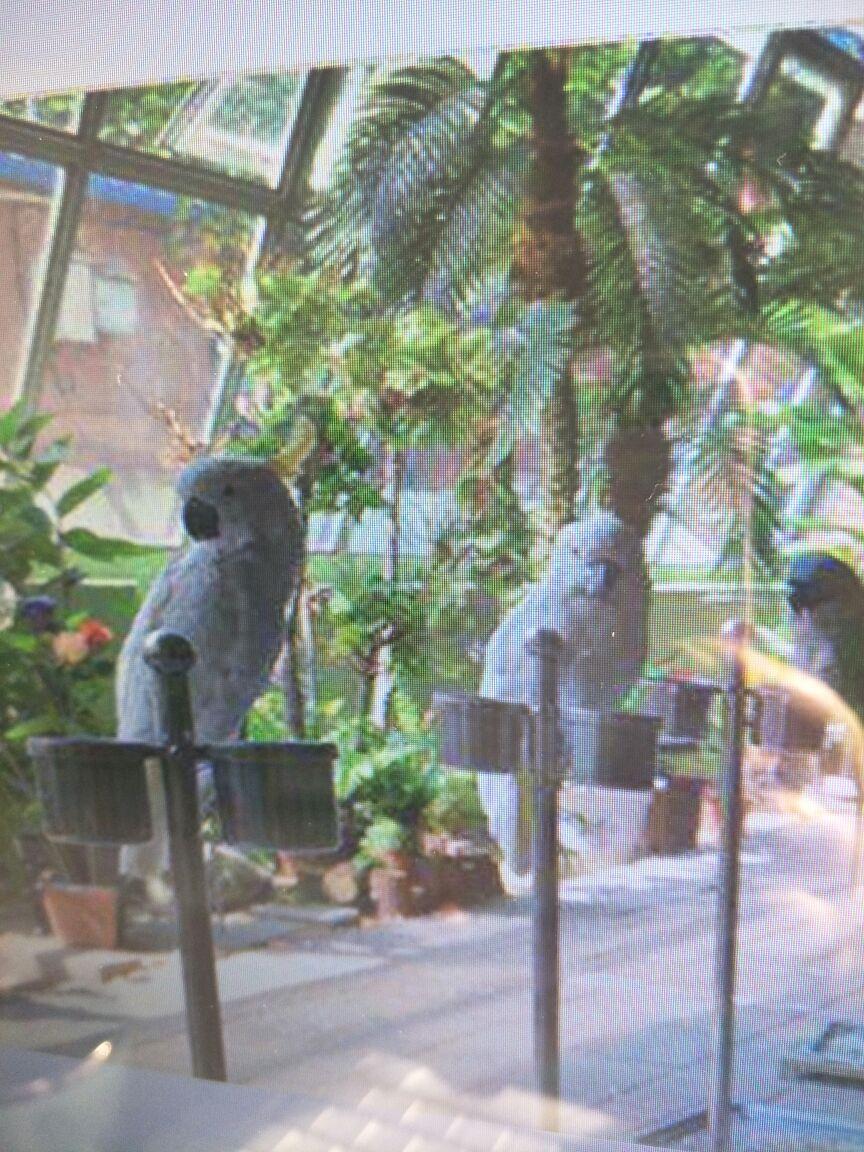 【携程攻略】廊坊御禾动物园景点,夏天去的动物园,一