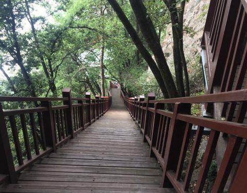 2019红河谷森林公园门票,眉县红河谷森林公园攻略姜维传完美图片